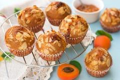 Aprikosmuffin med skivade mandlar Arkivbild