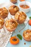 Aprikosmuffin med skivade mandlar Arkivbilder