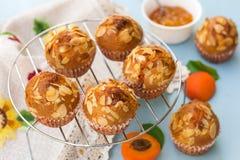 Aprikosmuffin med skivade mandlar Royaltyfri Foto