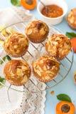 Aprikosmuffin med skivade mandlar Fotografering för Bildbyråer