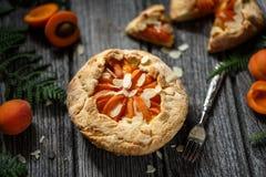 Aprikospaj eller aprikos Galette arkivfoton