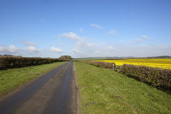 April auf den Yorkshirewolds Lizenzfreies Stockfoto