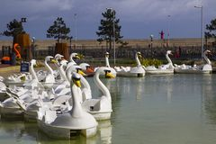 26 April 2018 Bangor Northern Ireland. Swan themed pedalos for hire in the popular Pickie Centre sit empty on a cool spring morni. Ng. This fun park and stock photography