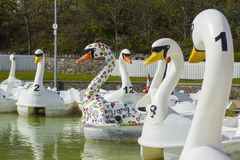 26 April 2018 Bangor Northern Ireland. Swan themed pedalos for hire in the popular Pickie Centre empty on a cool spring morning. 26 April 2018 Bangor Northern stock photo