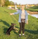 21. April 2018 - Breslau in Polen: Frau mit ihren geliebten Hunden in der Natur Lizenzfreie Stockfotografie