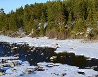 april Fluss Niva Stockbilder