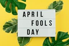 April Fool-` s Tag und tropische Blätter auf Gelb Stockfoto