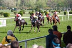 April Grand Prix 2011 in Bratislava, Slovakia Royalty Free Stock Images