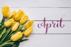 April hand lettering calligraphy. Yellow tulips bunch on white wooden planks rustic barn rural table background. Letters,. Inscription. Beautiful horizontal royalty free stock photo