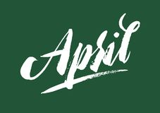 April lettering. Calligraphy hand drawn brush pen ink letters. Beautiful and green spring fresh poscard design. On background. April lettering. Calligraphy hand Stock Photos