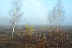 April mists Stock Image