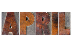 April month in wood type. April  - isolated word in vintage letterpress wood type blocks Stock Photography
