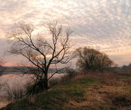 April morning. The Moscow area. On the river Oka royalty free stock photography