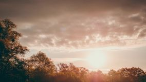 April Morning Sunrice 4 stock footage