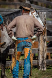 APRIL 22, 2017, RIDGWAY COLORADO: American Cowboys during cattle branding exchange words, at Centennial Ranch, Ridgway, Colorado-  Stock Photography