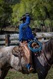 APRIL 22, 2017, RIDGWAY COLORADO: Amerikansk cowboy under nötkreatur som brännmärker på den hundraårs- ranchen, Ridgway, Colorado Royaltyfria Foton