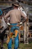 APRIL 22, 2017, RIDGWAY COLORADO: Amerikanska cowboyer under nötkreatur som brännmärker utbyte, uttrycker, på den hundraårs- ranc Arkivbild