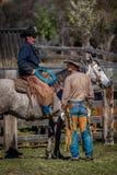 APRIL 22, 2017, RIDGWAY COLORADO: Amerikanska cowboyer under nötkreatur som brännmärker utbyte, uttrycker, på den hundraårs- ranc Fotografering för Bildbyråer