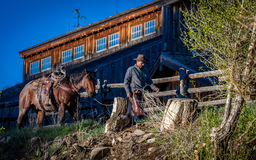 APRIL 22, 2017, RIDGWAY COLORADO: Cowboys ride horse on Centennial Ranch, Ridgway, Colorado - a cattle ranch owned by Vince Kotny Stock Images