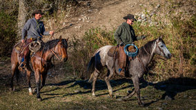 APRIL 22, 2017, RIDGWAY COLORADO: Cowboys ride horse on Centennial Ranch, Ridgway, Colorado - a cattle ranch owned by Vince Kotny Royalty Free Stock Photos