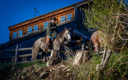 APRIL 22, 2017, RIDGWAY COLORADO: Cowboys ride horse on Centennial Ranch, Ridgway, Colorado - a cattle ranch owned by Vince Kotny Royalty Free Stock Images