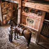 APRIL 22, 2017, RIDGWAY COLORADO: Cowboys saddles horse on Centennial Ranch, Ridgway, Colorado - a cattle ranch owned by Vince Kot Stock Photography