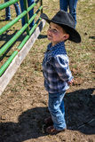 APRIL 22, 2017, RIDGWAY COLORADO: Young cowboy during cattle branding on Centennial Ranch, Ridgway, Colorado - a ranch with Angus/ Stock Photography