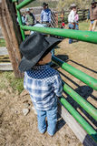 APRIL 22, 2017, RIDGWAY COLORADO: Young cowboy during cattle branding on Centennial Ranch, Ridgway, Colorado - a ranch with Angus/ Stock Image