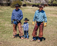 APRIL 22, 2017, RIDGWAY COLORADO: Young cowboy and father brand cattle on Centennial Ranch, Ridgway, Colorado - a ranch with Angus Royalty Free Stock Photos