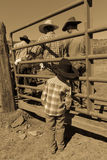 APRIL 22, 2017, RIDGWAY COLORADO: Young cowboy watches father brand cattle on Centennial Ranch, Ridgway, Colorado - a ranch with A Royalty Free Stock Photos