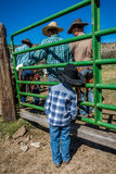 APRIL 22, 2017, RIDGWAY COLORADO: Young cowboy watches father brand cattle on Centennial Ranch, Ridgway, Colorado - a ranch with A Royalty Free Stock Images