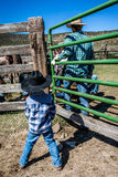 APRIL 22, 2017, RIDGWAY COLORADO: Young cowboy watches father brand cattle on Centennial Ranch, Ridgway, Colorado - a ranch with A Stock Image