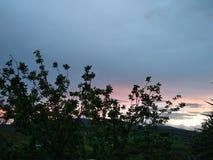 April sunset royalty free stock image