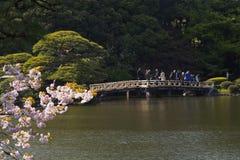 April in Tokyo Japan Stockfoto