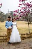 April tot bloei 2016 - Qingdao, China - het Chinese paar die huwelijksbeelden doen tijdens de kers komt festival Royalty-vrije Stock Foto's