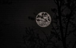 April waning gibbous moon Stock Images