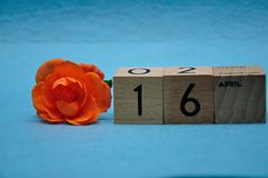 16 April on wooden blocks with an orange rose. On a blue background stock photography