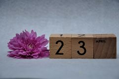 23 April on wooden blocks with a pink daisy stock image