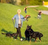 APRIL 21, 2018 - Wroclaw in Poland: Woman with her beloved dogs in nature Stock Image