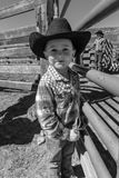 22 APRILE 2017, RIDGWAY COLORADO: Giovane cowboy durante il bestiame che marca a caldo sul ranch centennale, Ridgway, Colorado -  Fotografie Stock