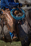 22 APRILE 2017, RIDGWAY COLORADO: Il cowboy americano durante il bestiame che marca a caldo lo scambio esprime, al ranch centenna Fotografie Stock