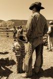 22 APRILE 2017, RIDGWAY COLORADO: Il giovani cowboy e padre marcano a caldo il bestiame sul ranch centennale, Ridgway, Colorado - Fotografia Stock Libera da Diritti
