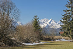 Apring σε Oberland Στοκ φωτογραφία με δικαίωμα ελεύθερης χρήσης