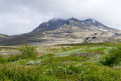 Aproaching το ηφαίστειο Στοκ φωτογραφίες με δικαίωμα ελεύθερης χρήσης