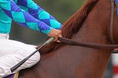 Apronte para competir Fotos de Stock Royalty Free