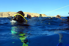 Apronte para mergulhar? Fotos de Stock Royalty Free