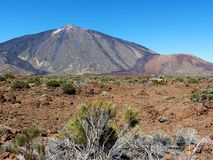 Apronte para salvar na montagem Teide Imagens de Stock