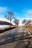 Aproximação amigável da mola nos derretimentos da neve do inverno da floresta em República Checa Tempo ensolarado no fim do inver foto de stock royalty free