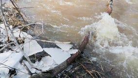 Aproximação amigável e movimento do rio através dos ramos caídos das árvores vídeo de movimento lento video estoque