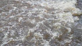 Aproximação amigável e movimento do rio no vídeo de movimento lento da mola video estoque